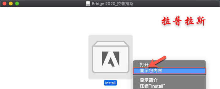 Bridge 2020 Mac_2.png